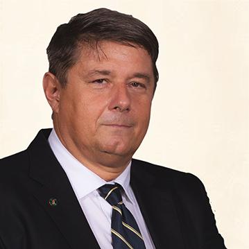 Prof. Dr. habil. László Rovó